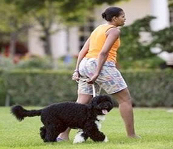 Michelle walking the dog, BO.