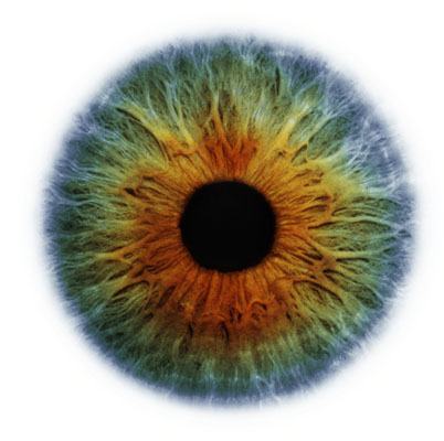 eye_iris - Copy