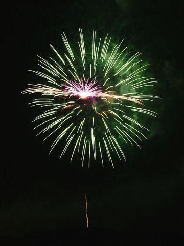 450px-Fireworks-27527-1 - Copy