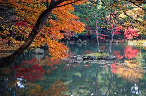 Autumn - Copy