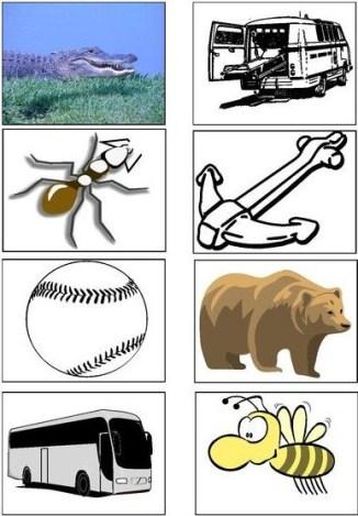 alphabet - Copy