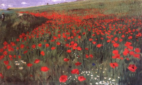 Poppies_in_the_Field - Copy