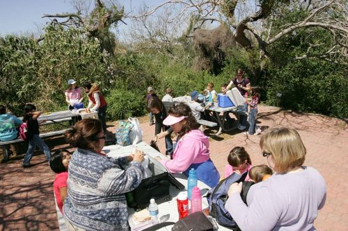 People_enjoying_beautiful_day_for_a_picnic - Copy