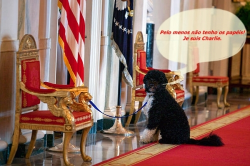 0518-bo-obama-dog-value_full_600 - Copy