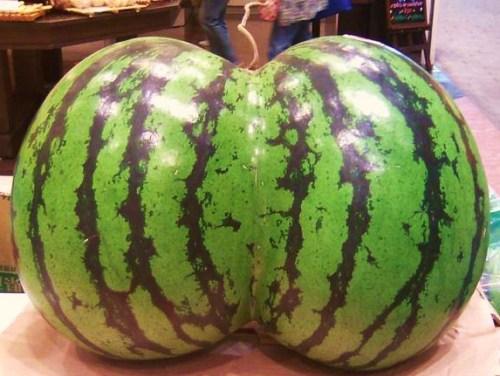 watermelontwin - Copy